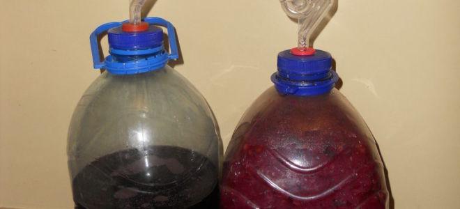 Наливка из винограда в домашних условиях простой  685