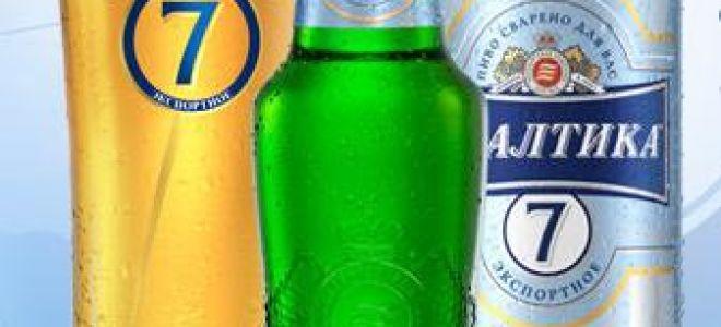 Пиво Балтика — обзор популярного напитка