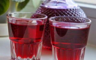 Лучшие рецепты самогона на клюкве в домашних условиях