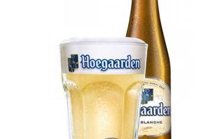 Пиво Hoegaarden (Хугарден) — виды и особенности бельгийского напитка