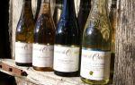 Лучшие французские вина — особенности и различия