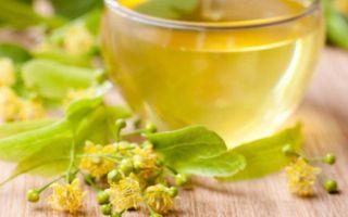 Водка Зубровка — полезные свойства и рецепт приготовления