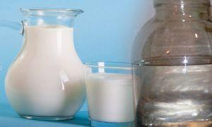 Правильная очистка самогона молоком в домашних условиях