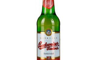 Пиво Budweiser (Будвайзер) — обзор и особенности немецкого напитка