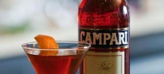 Настойка Campari Bitter (Кампари) — описание и правильное употребление