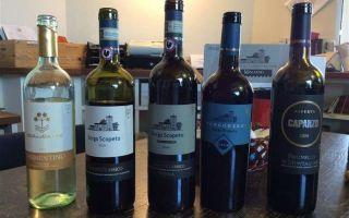 Итальянское вино Кьянти — выбор за который не стыдно