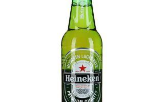 Пиво Хайнекен (Heineken) — описание алкогольного напитка