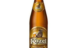 Пиво Велкопоповицкий Козел (Velkopopovicky Kozel) — история и описание