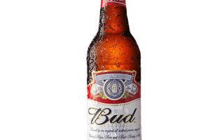 Пиво Бад (Bud)- обзор незабываемого напитка
