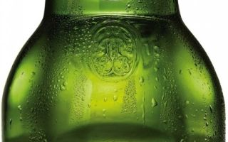 Пиво Grolsch (Гролш) — описание и особенности нидерландского напитка