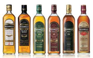Bushmills (Бушмилс) — особенности видов виски
