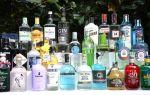 С чем и как пить джин — правила и особенности