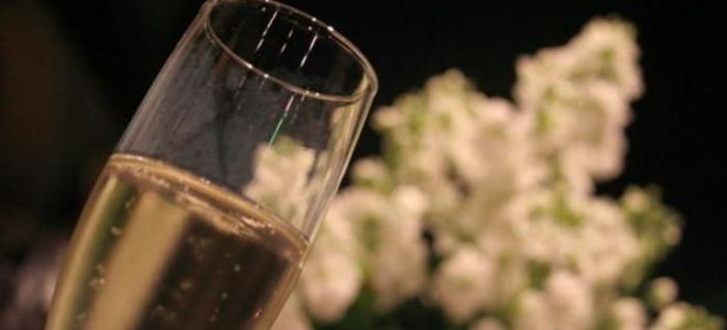 Какие бывают виды шампанского и как их классифицируют