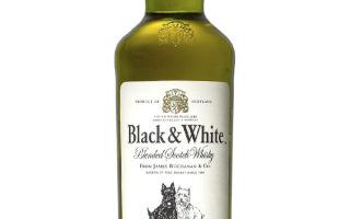 Виски Блэк энд Уайт (Black and White) — описание напитка и отзывы