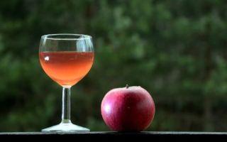 Домашнее яблочное вино: рекомендации для приготовления и рецепты