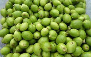 Рецепты настойки из зеленого грецкого ореха на водке
