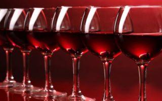 Вино Пино Нуар — необычный напиток из необычных ягод