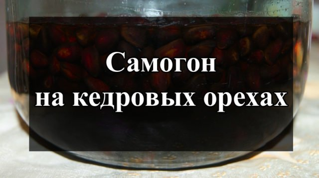 Рецепты самогона на кедровых орехах: технология и методы