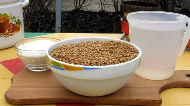 Как сделать брагу на пшенице для самогона