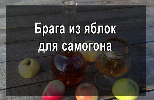 Брага из яблок для самогона