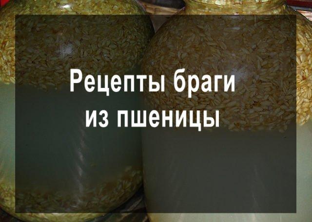 zerno-zalit-teploj-vodoj-i-ostavit-dlya-brozheniya