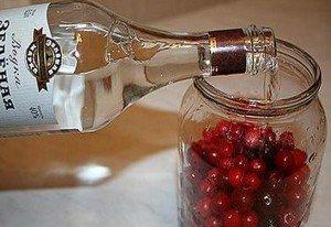 Самогон на клюкве: лучшие рецепты настоек в домашних условиях
