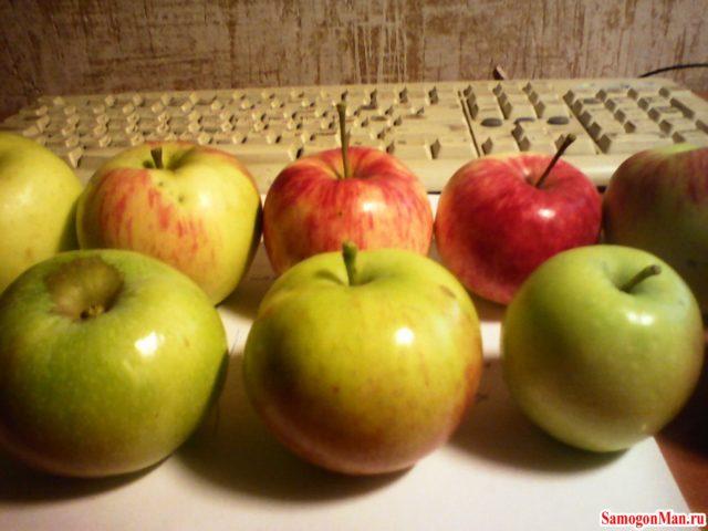 Самогон из яблочек