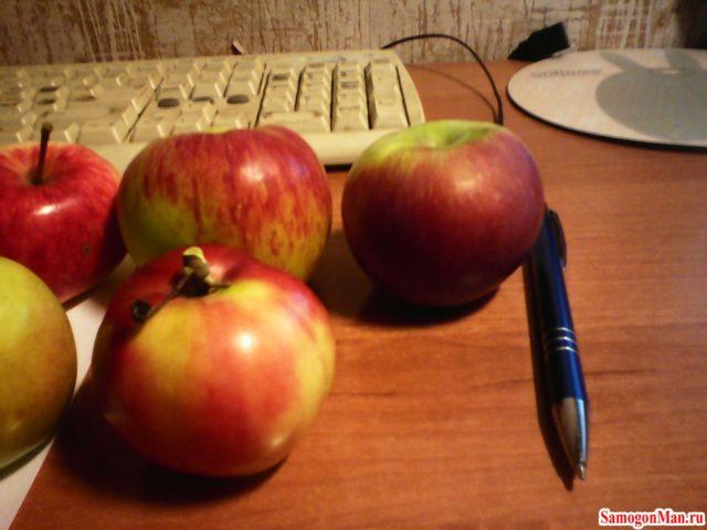 Обработка яблок