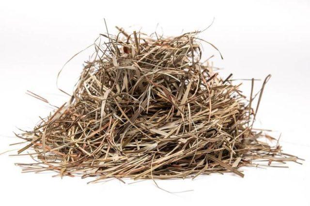 куча травы