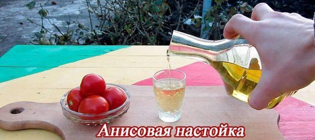 рецепт приготовления анисовки