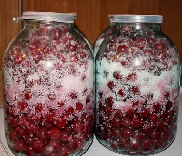 Настойка вишневая на водке в домашних условиях