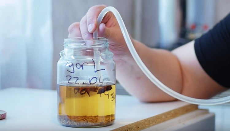 Анисовая настойка (Анисовка): рецепты приготовления в домашних условиях