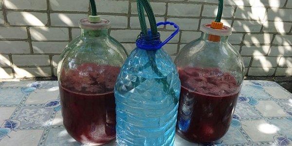 Как приготовить вино из вишни с косточкой в домашних условиях
