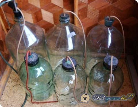 Как приготовить домашнее вино своими руками