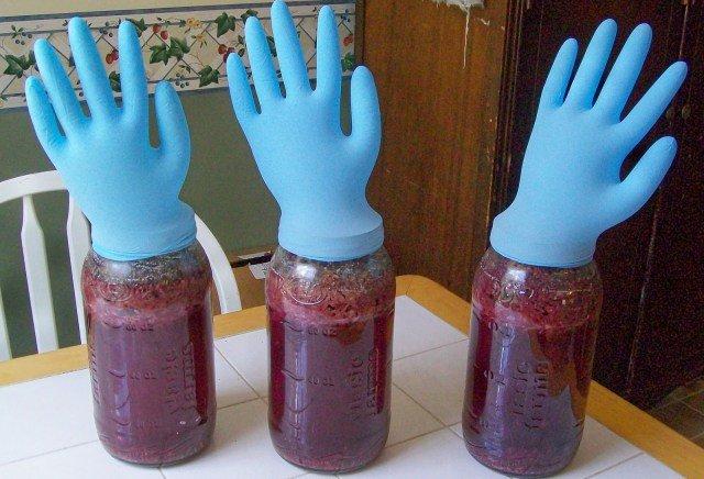 перчатка на вине
