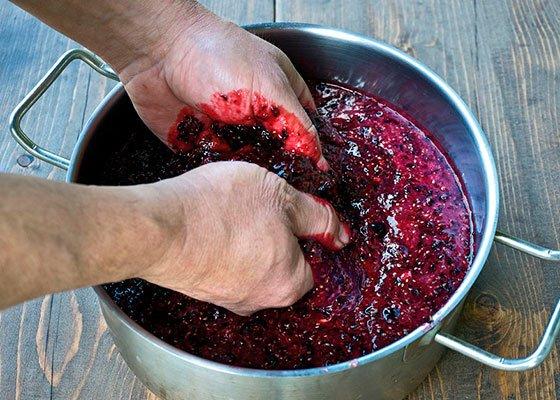 Дрожжи из смородины