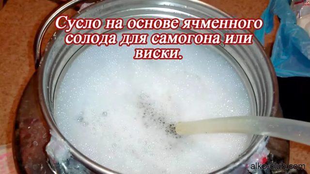 сусло