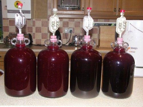 Как сделать вино из черной рябины
