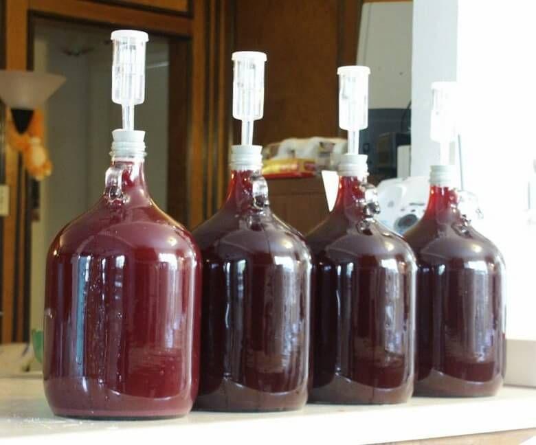 вино с гидрозатвором