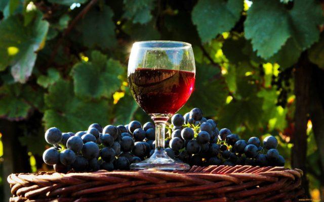 домашнее вино