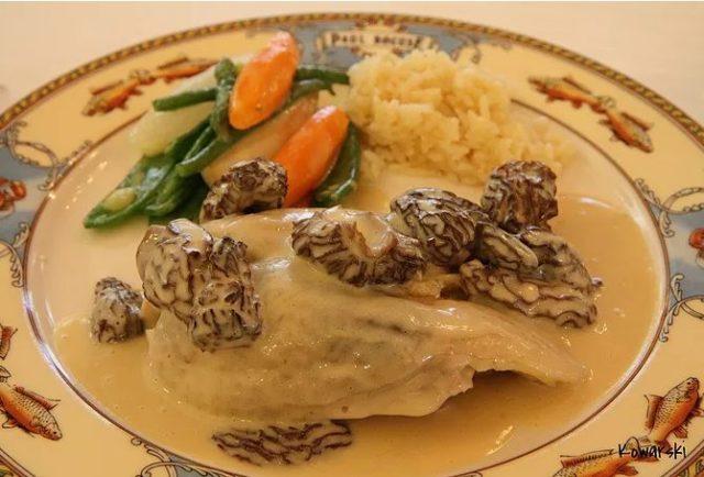 Фрикасе из курицы в сливочном соусе со сморчками