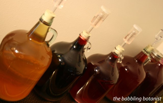 Хранение домашнего вина