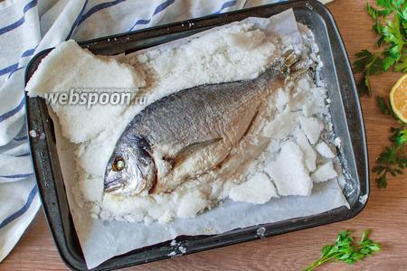 Копченая дорадо, как приготовить деликатес самостоятельно