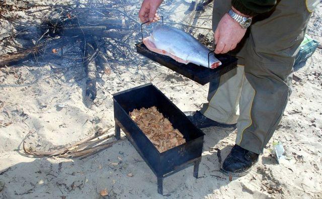 Как правильно коптить семгу в домашних условиях, опыт рыбаков