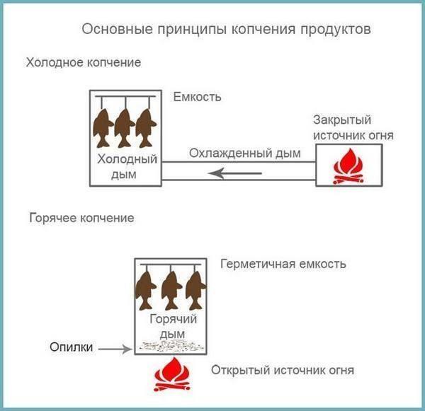 Как коптить нельму горячим и холодным методом