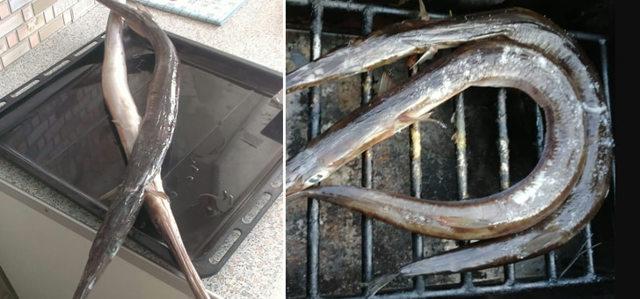 Копченая рыба-игла: горячий и холодный рецепты, советы мастера