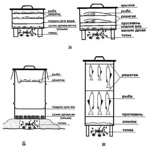 Как коптить севрюгу в домашних условиях, рецепты приготовления