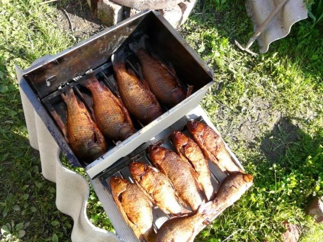 Строим коптильню для рыбы из подручных средств, простые способы